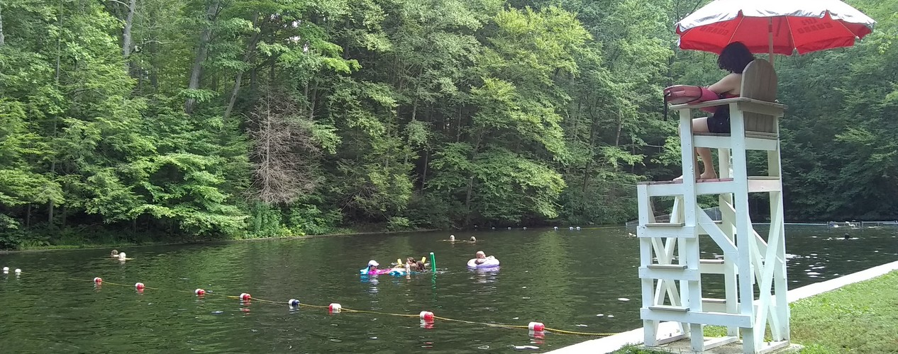 Highlands Natural Swimming Pool Ringwood New Jersey